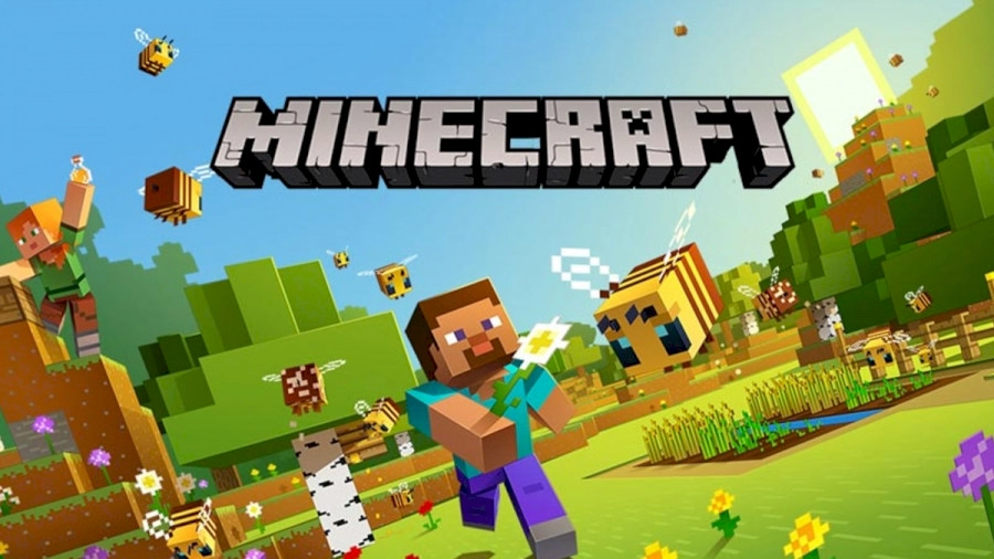 Minecraft Server Image